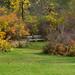 UW-Madison Arboretum 11-03-2011 199