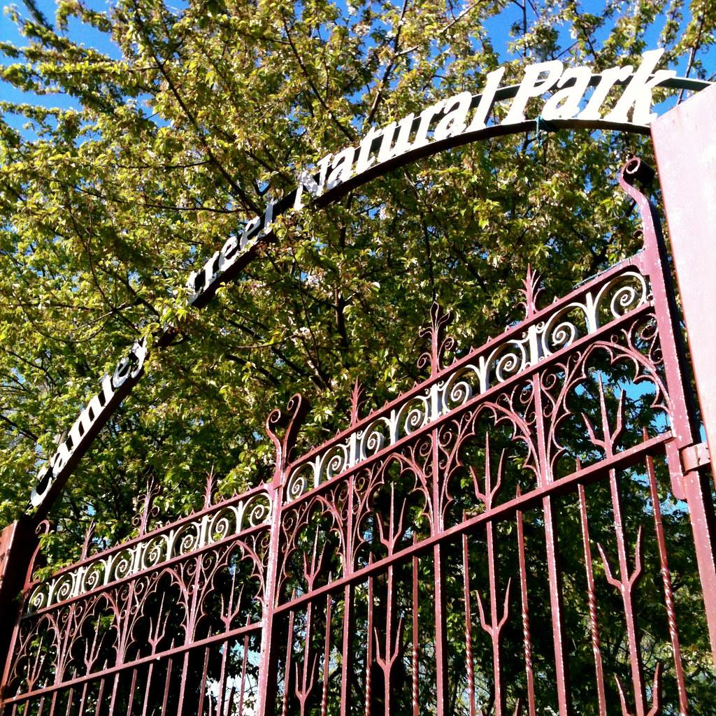 Camley Street Natural Park London Uk
