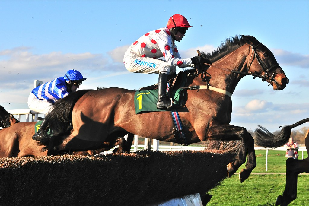 Uk Steeplechase Race Horse Leaps Over Fence Paul Flickr