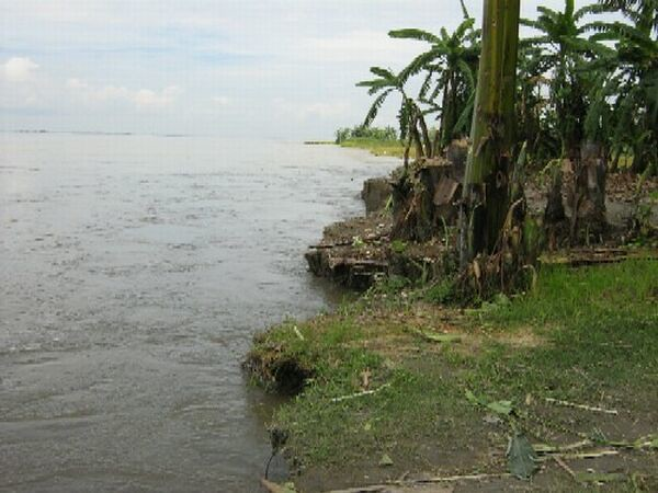 Schoudertassen river island : River island majuli of assam