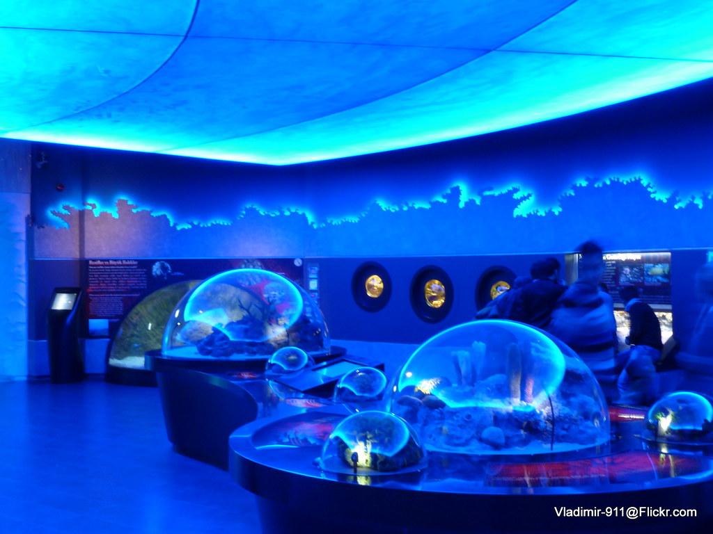 Istanbul Aquarium (Istanbul Akvaryumu), Turkey Istanbul Aq ...