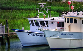 Boats moored along the Shem Creek | by hoan luong