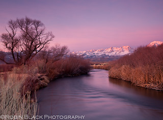 Winter Sunrise over the Owens River | by Robin Black Photography