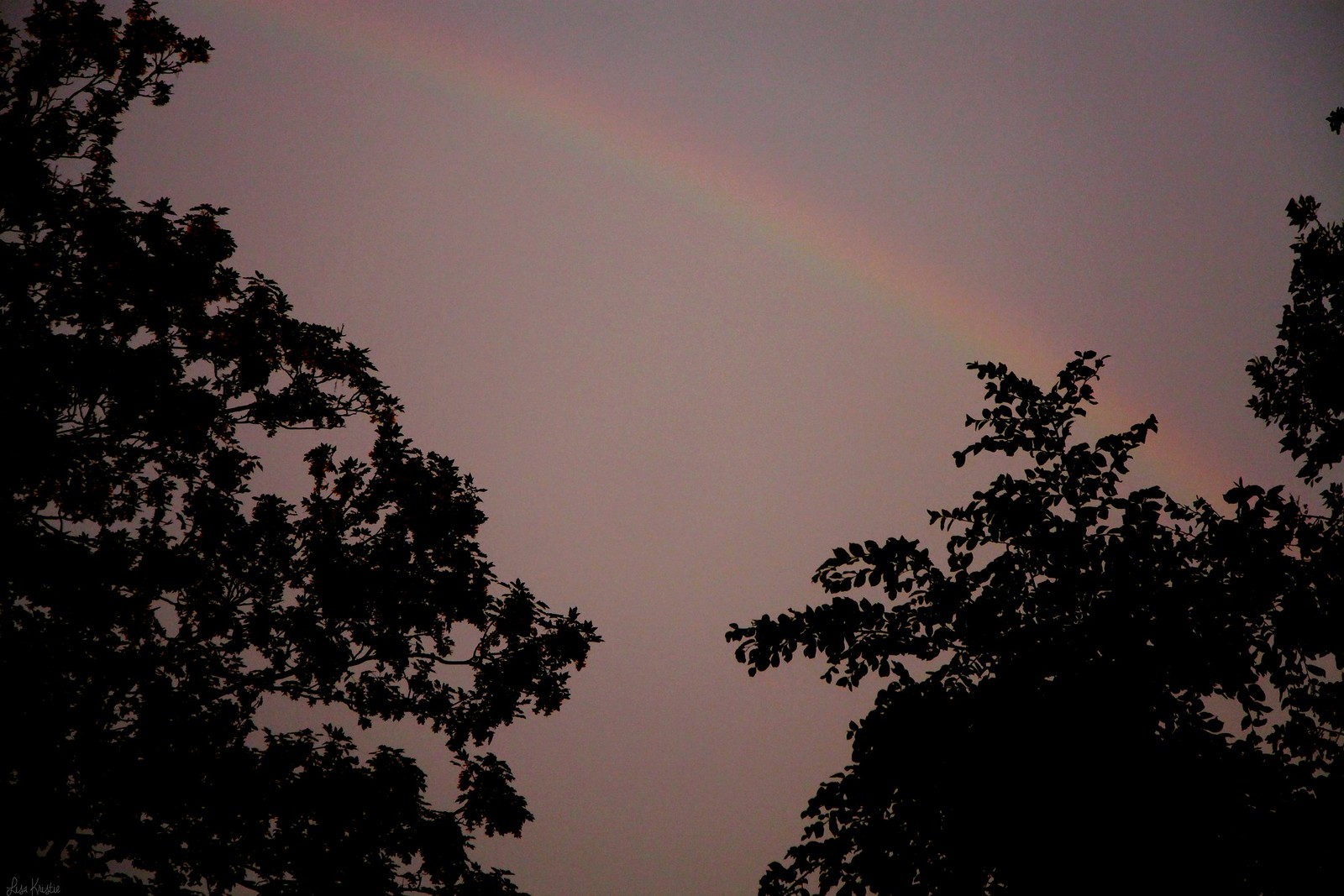 rainbow dusk before the storm yellow purple sky trees outline shadows evening summer