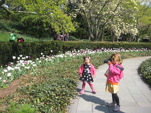 Magnolia Plaza Flower Beds | by Brooklyn Botanic Garden
