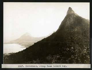 Mary Agnes Chase's Field Work in Brazil, Image No. 1947. Corcovado, steep face toward bay. | by Smithsonian Institution
