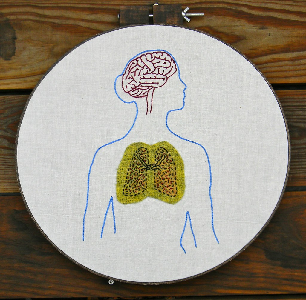 Female anatomy brain and lung embroidery hoop art
