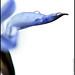 Wild Blue Flower_2