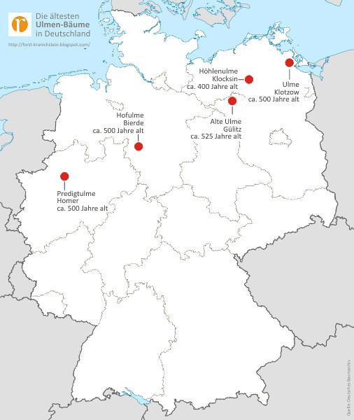 alte ulmen b ume in deutschland mehr zu diesem foto und. Black Bedroom Furniture Sets. Home Design Ideas