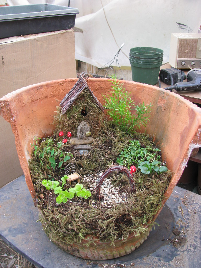 clay pot fairy garden why i love my job on days like. Black Bedroom Furniture Sets. Home Design Ideas