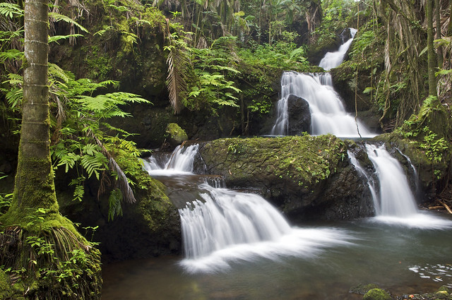 Jungle Waterfall South Hilo Hawaii Flickr Photo Sharing