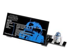10225 R2-D2 (20)