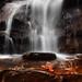 Sirimane Falls, Agumbe