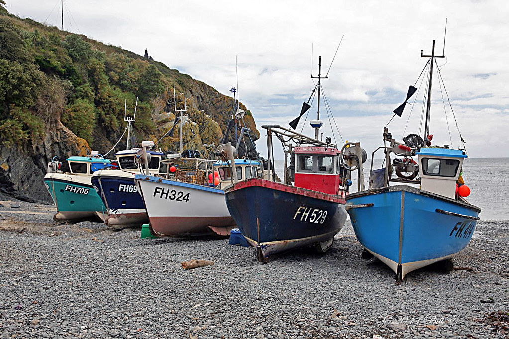 Inshore fishing boats on the beach at cadgwith cove cornw for Inshore fishing boats