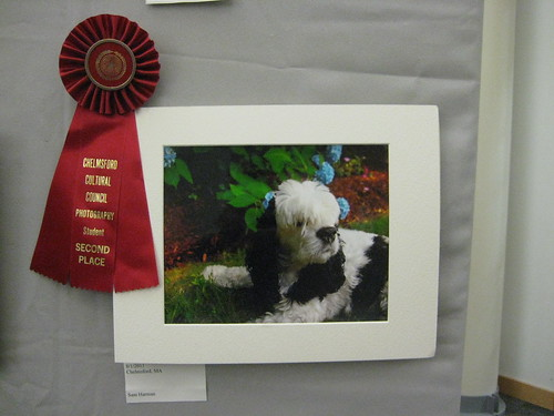 2012 Winterfest Student - Second Place | by chelmsfordpubliclibrary