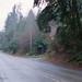 West Lake Sammamish Parkway - Bellevue WA