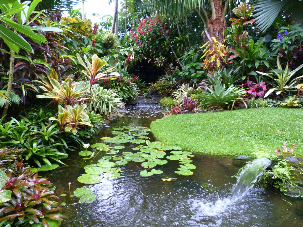 Water feature water feature lots of colour and pretty for Garden pool dennis mcclung