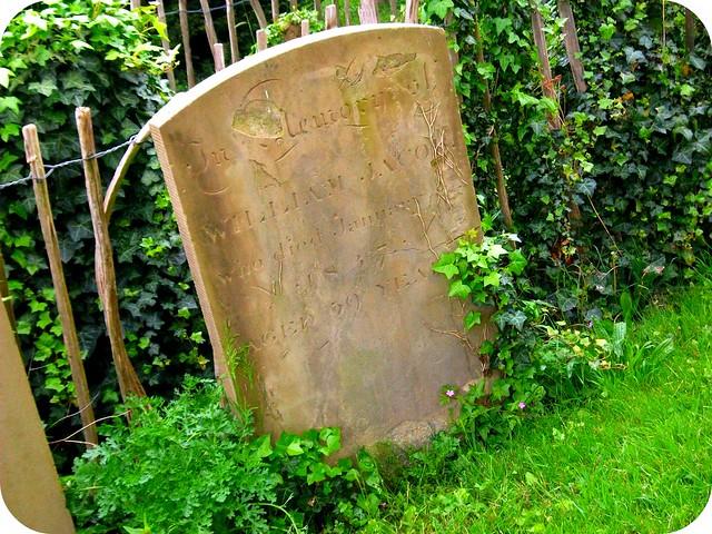 Ivy-Gravestone