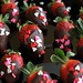 Chocolate covered strawberries...