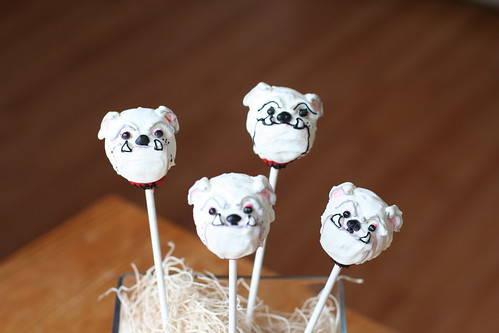 UGA Dawgs Cake Pops | by Sweet Lauren Cakes