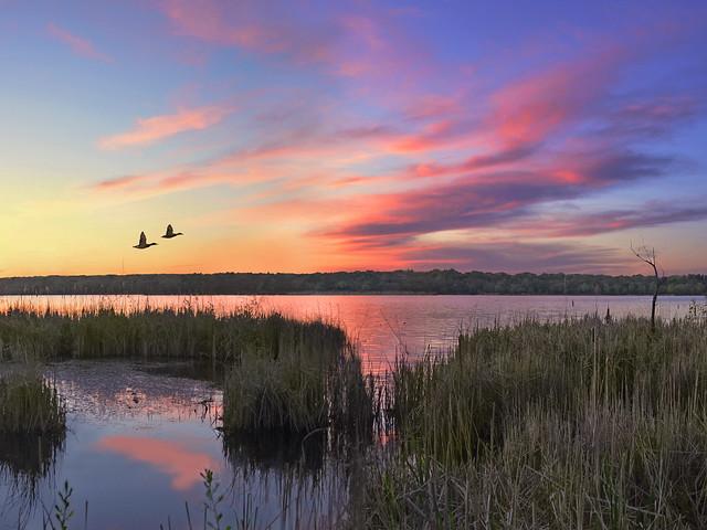 lake wingra sunset