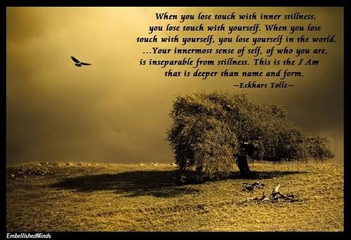 Wisdom Quotes Online Quotes Magnificent Wisdom Quotes
