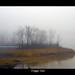 Foggy Isle