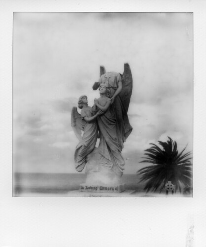 POLAROID-WAVERLEY CEMETERY | by Eva Flaskas