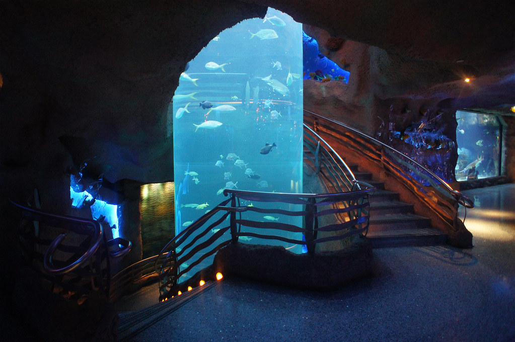 The Downtown Aquarium Houston Texas HDR   The Downtown ...
