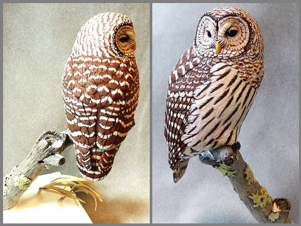 Barred owl bird carving natureswings tim