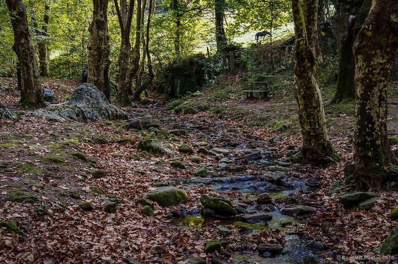 El Olabidea antes de la entrada a la Gran Cueva