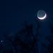 Moonshine and Jupiter - 3/25/12
