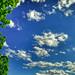 """Clouds on blue sky"""