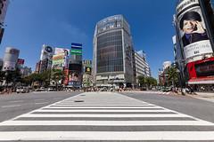 20120605_01_渋谷スクランブル交差点