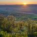 Steptoe Butte Syringa Sunrise
