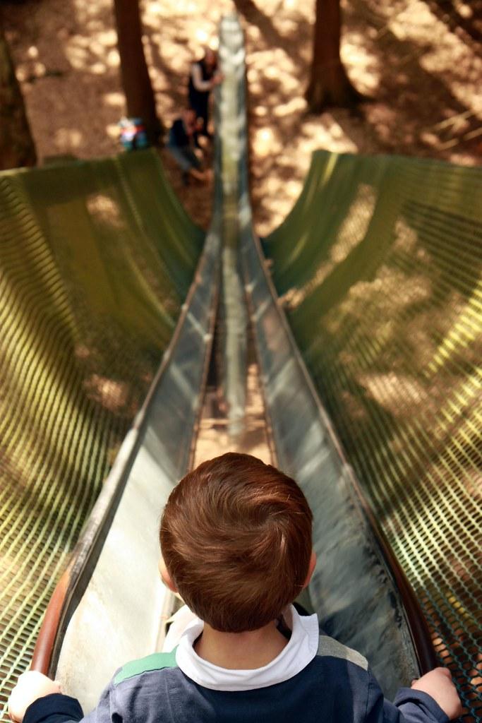Longest slide in the world 3 bowmore house forest and Longest house in the world