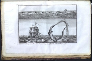 The great Sea Serpent, according to different Descriptions | by Library & Archives @ Royal Ontario Museum