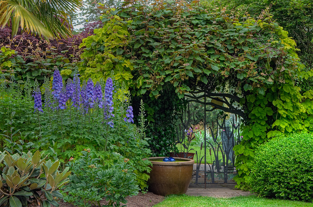 Front gate to my garden this is a shot of the front gate for My garden 3d