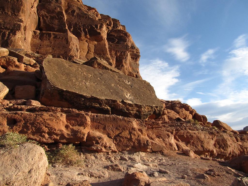 Fossilized Dinosaur Tracks Potash Road Near Moab Utah
