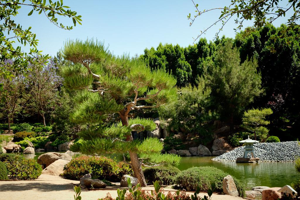 Japan Friendship Garden Phoenix Az Ro Ho En Located In Flickr