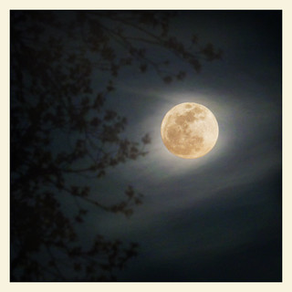 SuperMoon | by swatzo