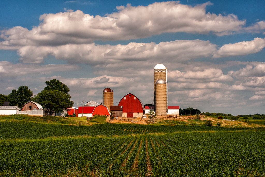 Iowa Farms Inc Iowa Farm | Flickr Photo