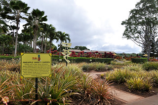 Dole Pineapple Plantation | by Discover Hawaii Tours