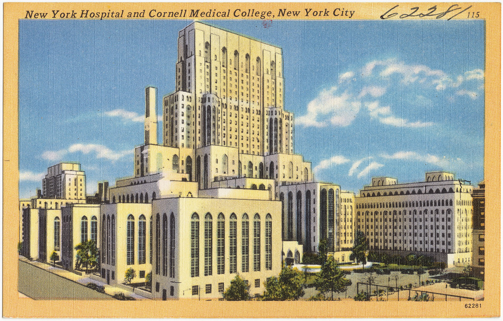 New York Hospital And Cornell Medical College New York Ci