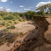 Dried riverbed in Masai land