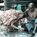 Also this situation unfortunately is India | Mumbai old town | Indian poor people