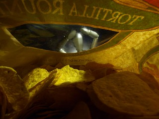 2012-123-366 ... A Tortilla Chips Worst Nightmare | by Electroburger