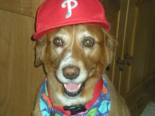 Monica's dog | by PhilliesNation