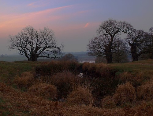 Bradgate 1 (2) Explored 31-03-2012 | by Pete Cartwright