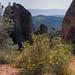 2012-04-27-Pinnacles-National-Monument-168_69_70.jpg